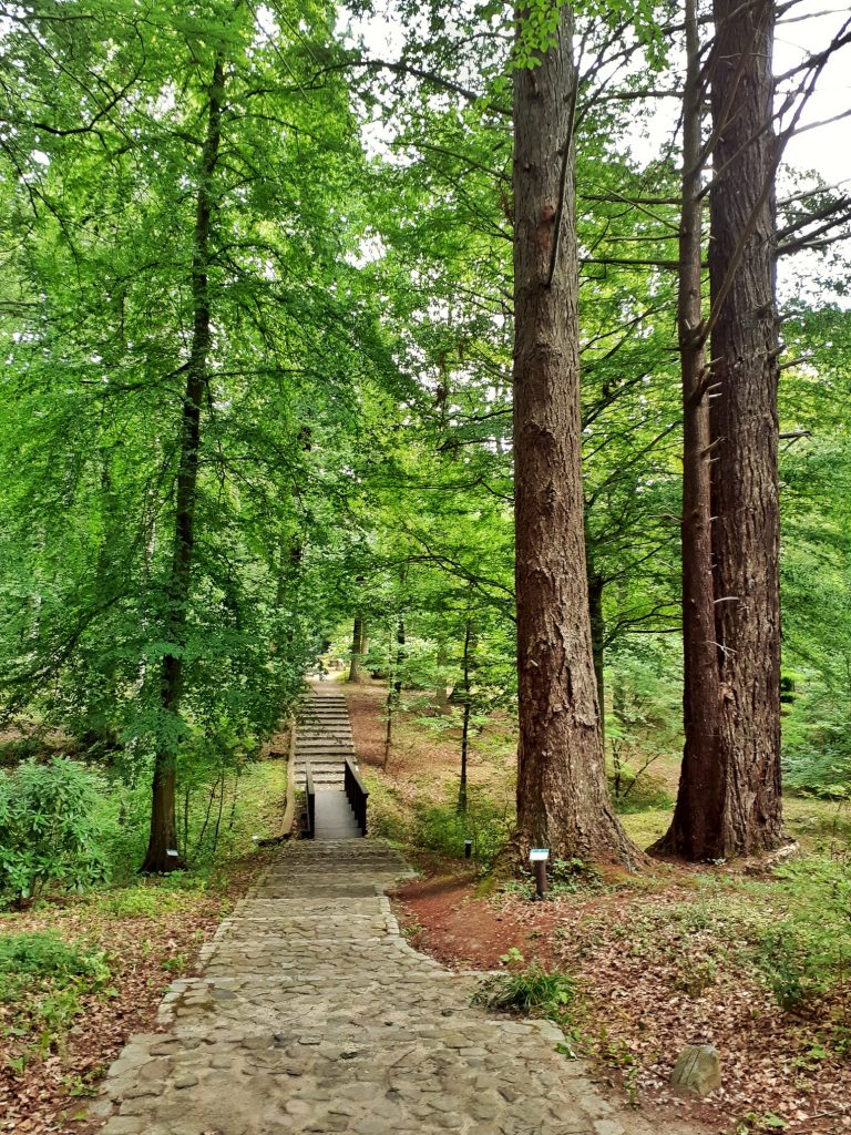 Arboretum Karniszewice