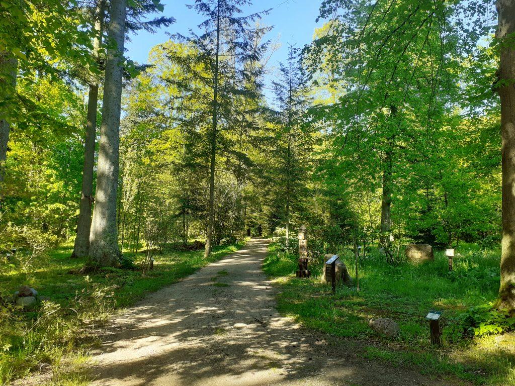 Arboretum Karnieszewice