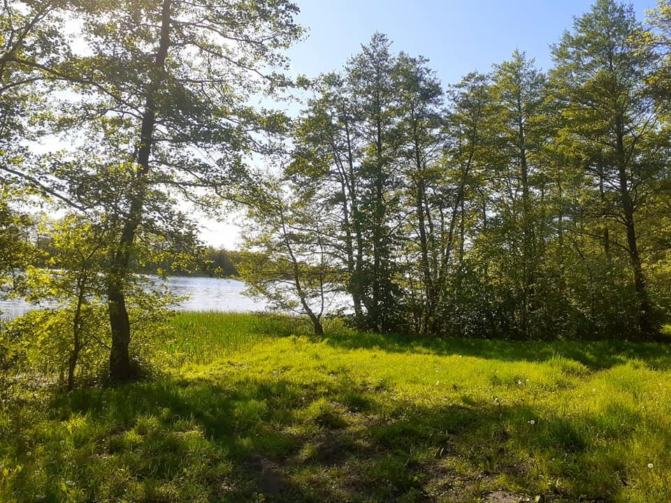 Na brzegu Jeziora Parnowskiego