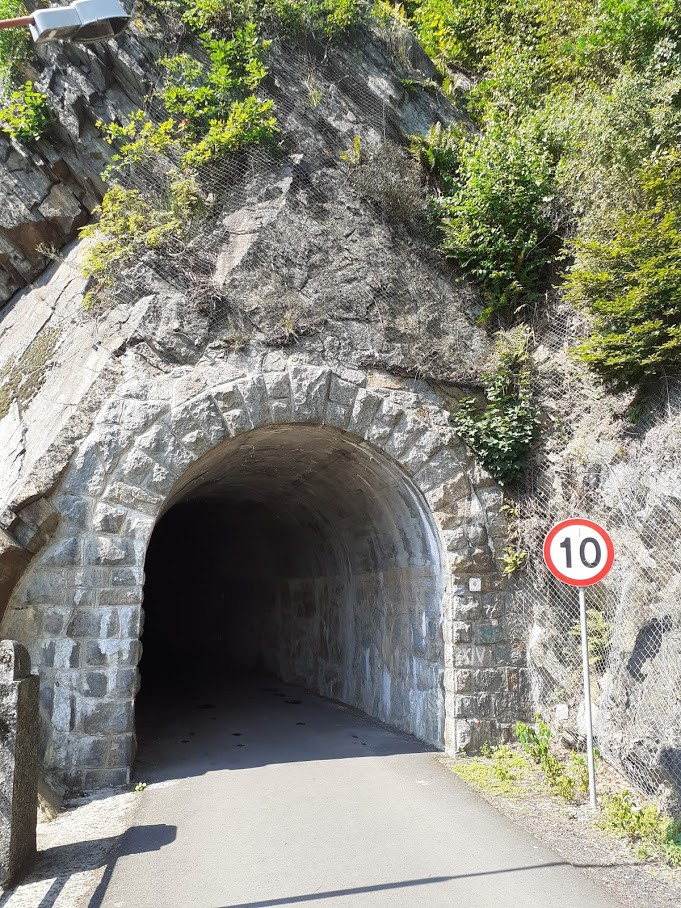 Malowniczy tunel
