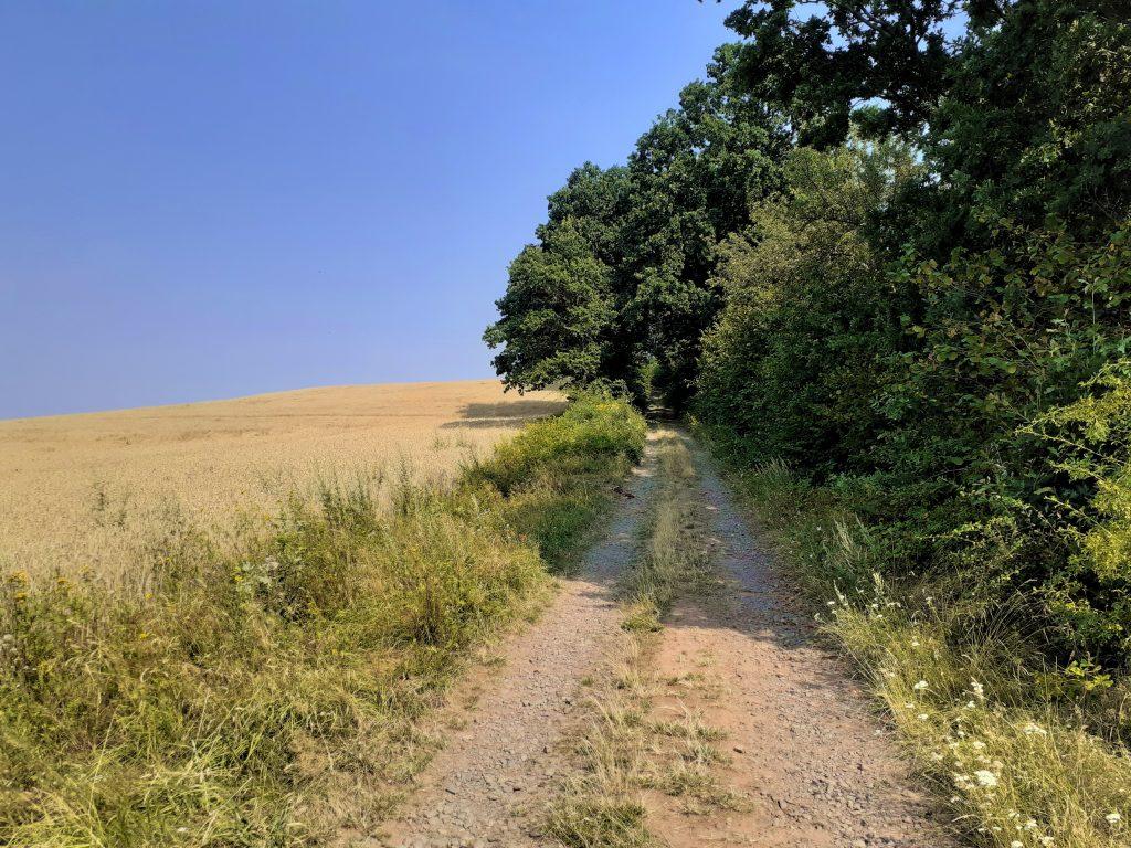Zielony szlak na Ostrzycę