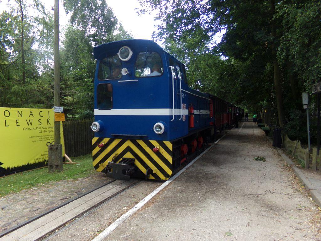 Pociąg pasażerski oczekuje na stacji Biskupin na odjazd do Wenecji i Żnina
