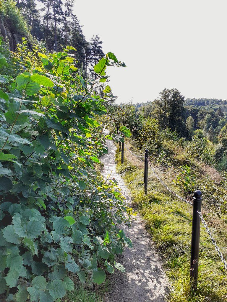 Ścieżka  przyrodniczo-dydaktyczna